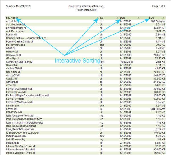 DSStudio File Directory Detail Report