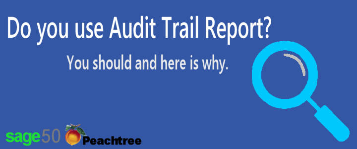 Sage 50 Audit Trail Report
