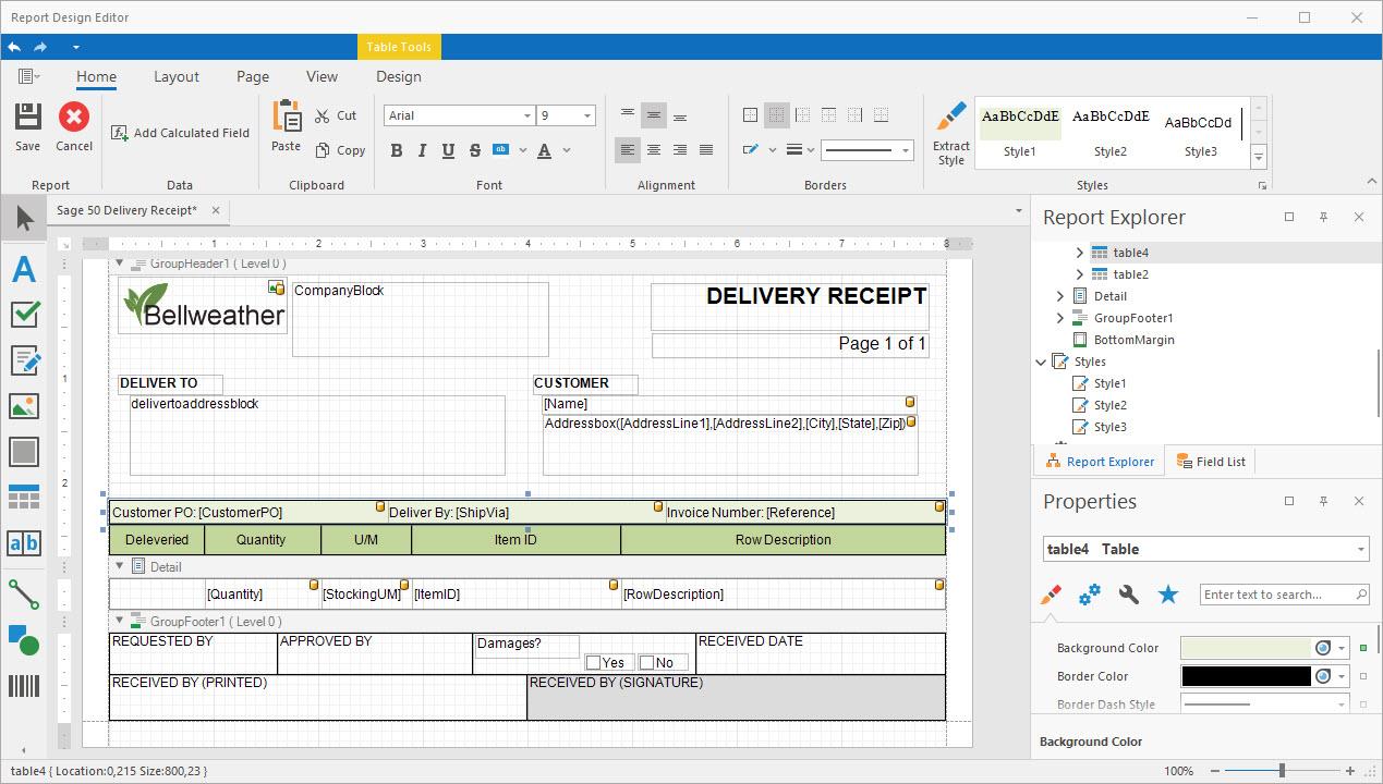 DSStudio Report Designer Surface